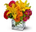 Summertime Splash Local and Nationwide Guaranteed Delivery - GoFlorist.com