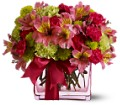 Teleflora's Cheers To You in Vancouver BC Downtown Florist