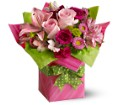 Teleflora's Pretty Pink Present in Hudson, New Port Richey, Spring Hill FL Tides 'Most Excellent' Flowers
