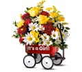Teleflora's Baby's First Wagon - Girl in Birmingham AL Norton's Florist