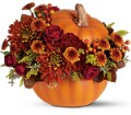 Teleflora's Prize Pumpkin Bouquet in Burlington NJ Stein Your Florist