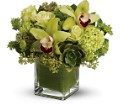 Teleflora's Rainforest Bouquet -  Deluxe in Oakville ON Heaven Scent Flowers