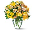 Sparkling Alstroemeria in Oklahoma City OK Array of Flowers & Gifts