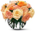 Perfect Pastel Roses in Laurel MD Rainbow Florist & Delectables, Inc.