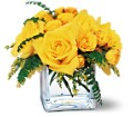 Yellow Rose Bravo! in Arlington Heights IL Sylvia's - Amlings Flowers