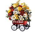 Teleflora's Baby's First Wagon - Boy in Chicagoland IL Amling's Flowerland