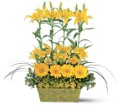 Yellow Garden Rows in Birmingham AL Norton's Florist