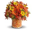 Teleflora's Candy Cornie in Oklahoma City OK Array of Flowers & Gifts
