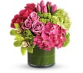 New Sensations in flower shops MD Flowers on Base