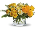 The Sun'll Come Out by Teleflora in Orlando FL University Floral & Gift Shoppe