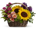 Picnic in the Park in Blue Hill ME Fairwinds Florist