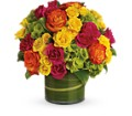 Blossoms in Vogue in New York NY New York Best Florist