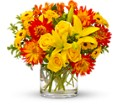 Summer Samba in Bend OR All Occasion Flowers & Gifts