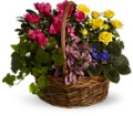 Blooming Garden Basket in Trumbull CT P.J.'s Garden Exchange Flower & Gift Shoppe