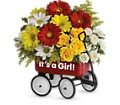 Baby's Wow Wagon by Teleflora - Girl in Warwick RI Yard Works Floral, Gift & Garden
