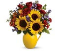 Teleflora's Sunny Day Pitcher of Joy in Hendersonville NC Forget-Me-Not Florist