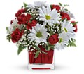 Red And White Delight by Teleflora in San Bruno CA San Bruno Flower Fashions
