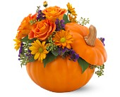 Teleflora's Pumpkin Patch Bouquet in Bossier City LA, Lisa's Flowers & Gifts