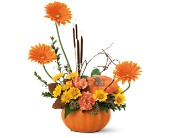Autumn Pumpkin in Bossier City LA, Lisa's Flowers & Gifts