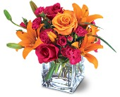 Prairie Village Flowers - Teleflora's Uniquely Chic Bouquet - Forget-Me-Not Flowers