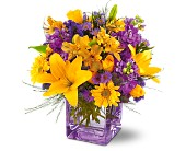 Teleflora's Morning Sunrise Bouquet in Charlotte NC, Starclaire House Of Flowers Florist