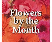Flowers By the Month<br>3 Months in Deerfield&nbsp;IL, Swansons Blossom Shop