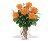 6 Orange Roses in Charlotte NC, Starclaire House Of Flowers Florist
