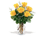 6 Yellow Roses in Charlotte NC, Starclaire House Of Flowers Florist