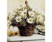 BASKET FULL OF DAISIES in Yelm, Washington, Yelm Floral