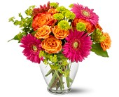 Teleflora's End of the Rainbow in Chesapeake VA, Lasting Impressions Florist & Gifts