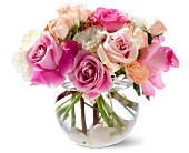 Greenwich Flowers - Teleflora's Roses on the Rocks - Greenwich Florist