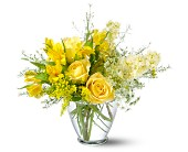 Teleflora's Delicate Yellow in Friendswood TX, Lary's Florist & Designs LLC