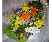 Cheerful Thoughts in Markham ON, Freshland Flowers