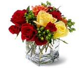 Teleflora's Carousel Roses in Bossier City LA, Lisa's Flowers & Gifts