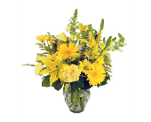 Vase of Sunshine in Indianapolis IN, McNamara Florist