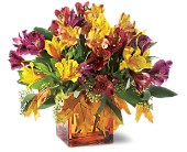 Teleflora's Autumn Alstroemeria Bouquet in Amherst NY, The Trillium's Courtyard Florist