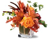 Teleflora's Orange Spice in Ammon ID, Petal Passion
