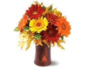 Autumn Gerberas in Amherst NY, The Trillium's Courtyard Florist