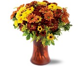 Country Chrysanthemums in Westport CT, Westport Florist