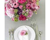 Reception in Wichita, Kansas, The Flower Factory, Inc.