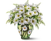 Teleflora's Crazy for Daisies Bouquet in Jersey City NJ, Entenmann's Florist