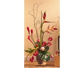 Tropical with Heliconia in Seattle WA, Hansen's Florist