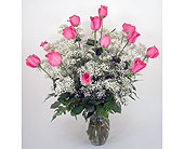 Standard Dozen Roses - Pink in Indianapolis IN, Gillespie Florists
