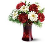 Festive Gerberas in Southington CT, The Garden Path Florist