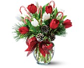 Peppermint Tulips in Norwich NY, Pires Flower Basket, Inc.