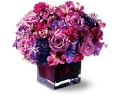 Teleflora's Plum Paradise in Oakville ON, Oakville Florist Shop