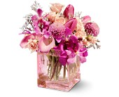 Teleflora's Oh So Pink in Paris ON, McCormick Florist & Gift Shoppe