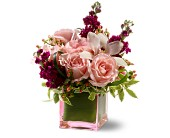 Teleflora's Sweetest Thing in Bellevue WA, DeLaurenti Florist