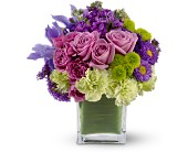 Teleflora's Mod About You in Staten Island NY, Eltingville Florist Inc.
