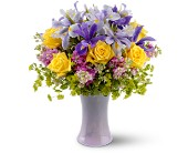 Lavender Sunshine in Watertown NY, Sherwood Florist